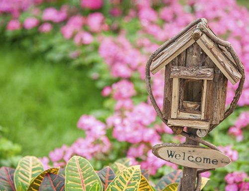 4 Great Reasons To Buy A Home This Spring